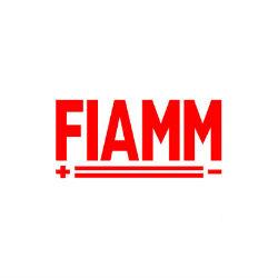 fiamm1